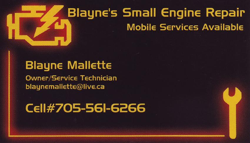 Blaynes-Small-Engine-Repair-Greater-Sudbury-Ontario-Blayne-Mallette-Owner-Service-Technician
