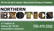 Northern Exotics Pet Shop in Sudbury Business Card
