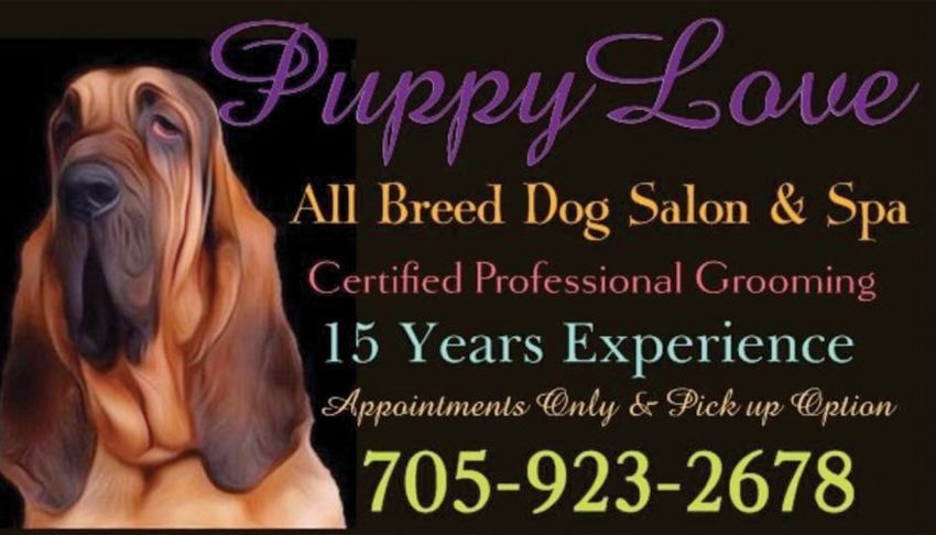 Puppy Love Pet Salon & Spa Sudbury Ontario Dog Grooming